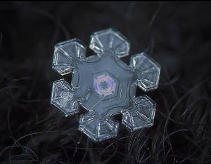 snowflake.2